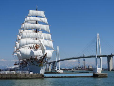 海王丸の総帆展帆(そうはんてんぱん)の画像