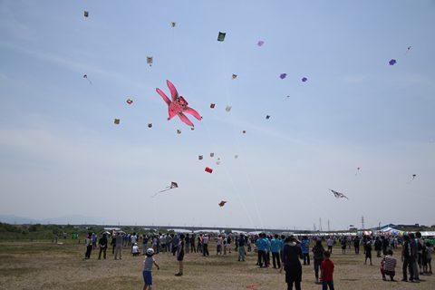 越中だいもん凧まつりの画像